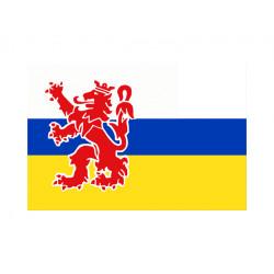 Vlag Limburg, meerdere maten